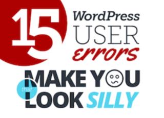Wordpress User Error Infographic