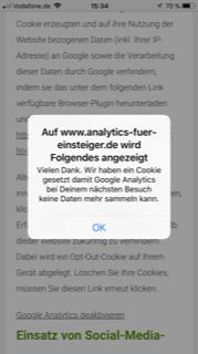Google Opt Out mit Plugin