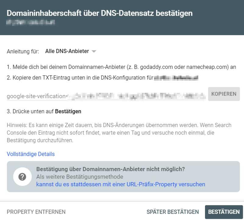 Die Domaininhaberschaft wird über den DNS-Datensatz bestätigt